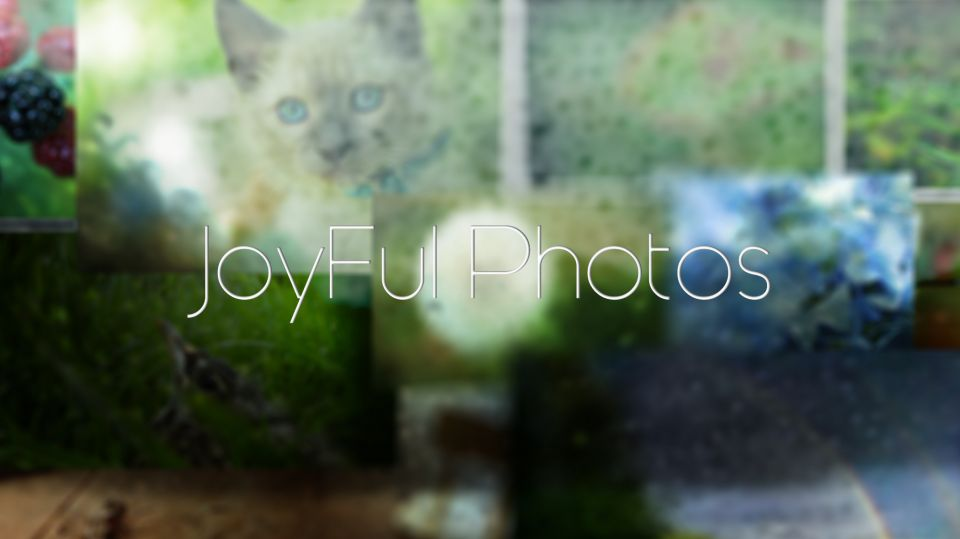 JoyFulPhotos Background