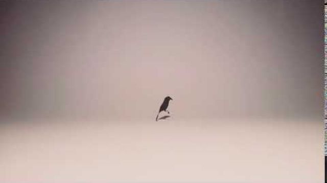 #Stopmotion | Nut to bird